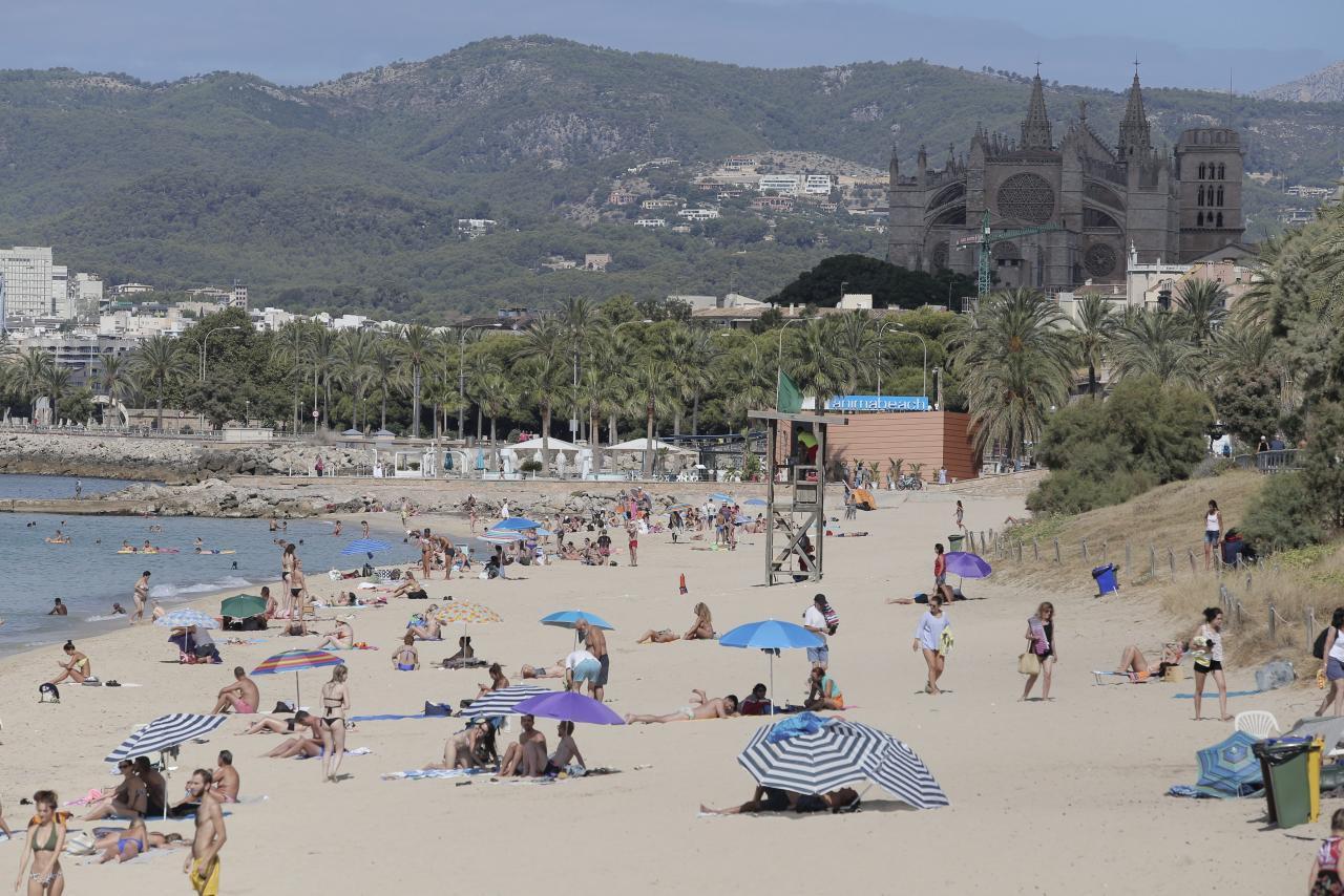 neue playa app von palma de mallorca