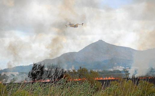 Ein Löschflugzeug bekämpft die bis zu 1,5 Kilometer lange Feuerfront.