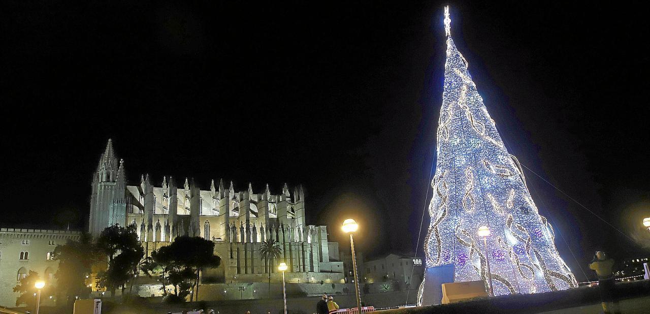 Der 27 Meter hohe Weihnachtsbaum vor der Kathedrale.