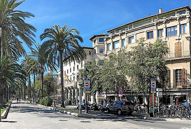 Bennazars Palmenallee vor der Lonja beginnt am Jugendstilgebäude Can Salas (rechts im Bild). Dort ist heute das Lokal Enco.