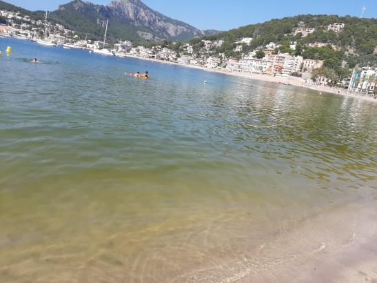 Von glasklarem Wasser kann in der Bucht von Sóller zurzeit keine Rede sein.
