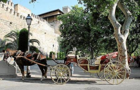 Pferdekutsche in Palma.