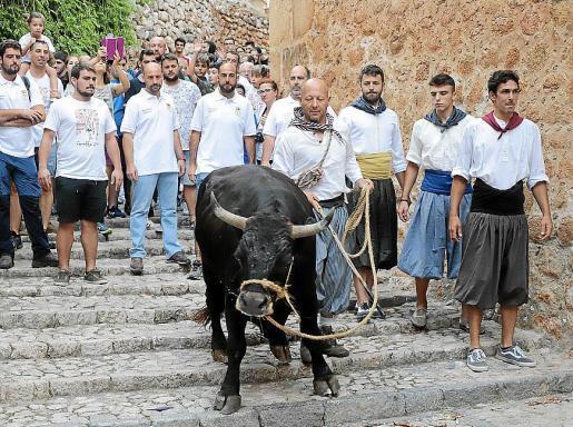 So wie auf diesem früheren Foto wird es 2020 nicht aussehen. Weniger Menschen, aber auch ein Stier.