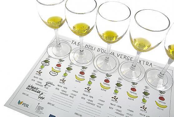 Mal ein anderer Zugang zum Thema Olivenöl – mit der eigenen Olivenöl-Probe unter Freunden.