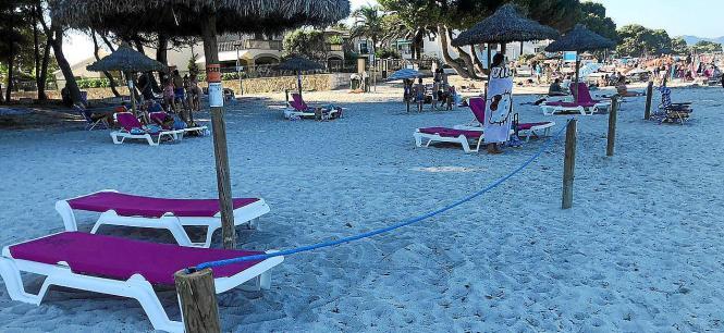 So sieht es derzeit am Strand von Port d'Alcúdia aus.