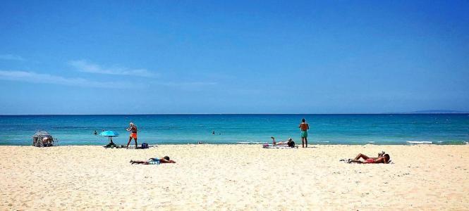 Naturbelassen wie ein Karibik-Strand: Noch sieht es so an der Playa de Palma aus.
