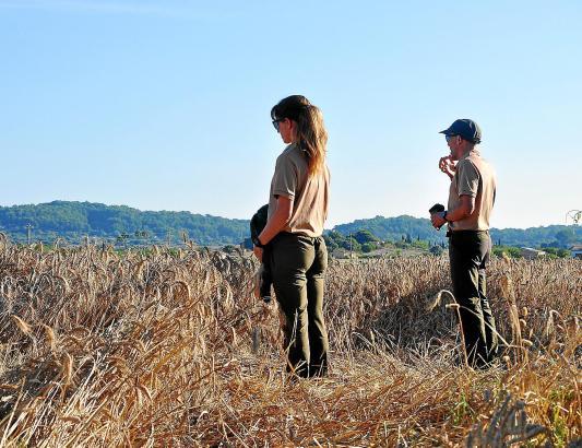 """Àngel García und Maria Muñoz von der Abteilung """"Jagd"""" des Inselrats lauschen am Rande des Ackers auf den Wachtelruf."""