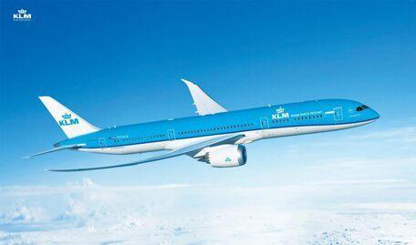 Blick auf einen fliegenden KLM-Jet.
