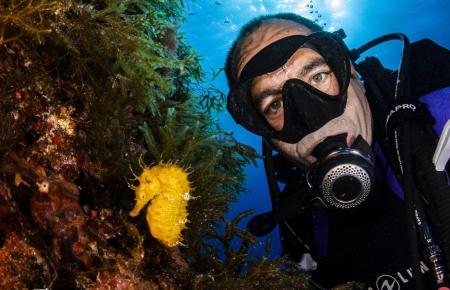 Selfie mit Seepferdchen: Der Unterwasserfotograf Tony Juan.