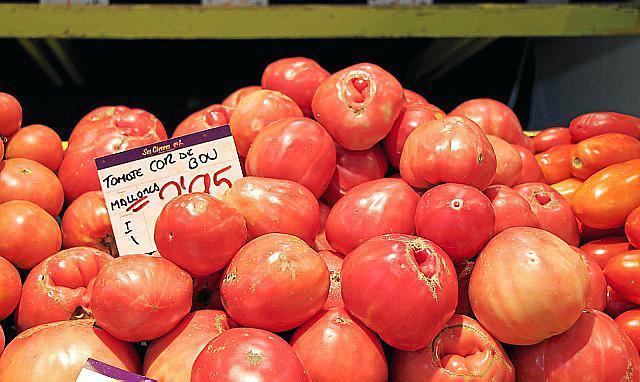 Die wuchtige Ochsenherztomate zählt zu den teureren Sorten.