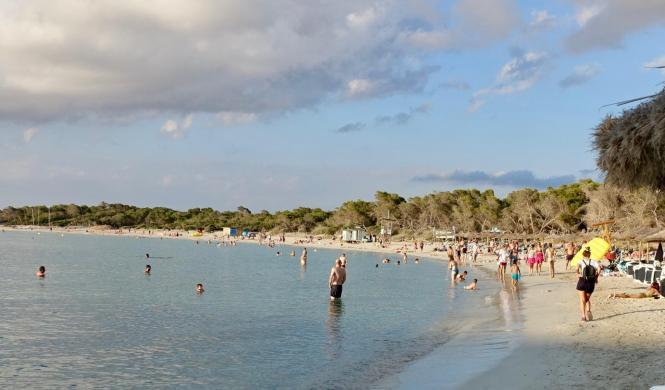 Wer sehnt sich nicht nach den schönen Mallorca-Stränden.