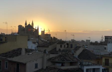 Blick auf die Kathedrale von Palma.