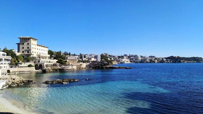 Einige Wohnungsbesitzer haben ihre Nöte auf Mallorca.