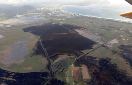 Aus der Luft ist das Ausmaß der verbrannten Flächen deutlich zu erkennen.