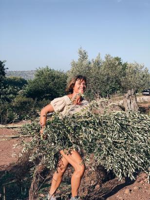 Katja Wöhr erntet die Olivenblätter per Hand von den Bäumen. Daraus entsteht ein köstliches Getränk.