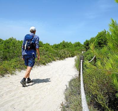 Die Dünenlandschaft von Es Comú in Muro gehört zum Albufera-Naturpark.