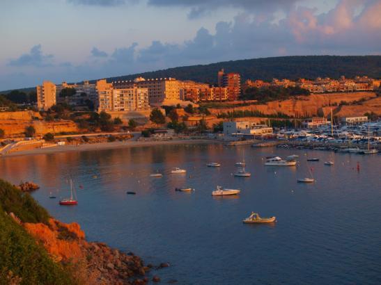 So schön leuchtet die Landschaft derzeit auf Mallorca.