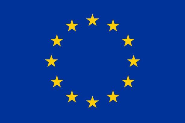 Blick auf die EU-Flagge.