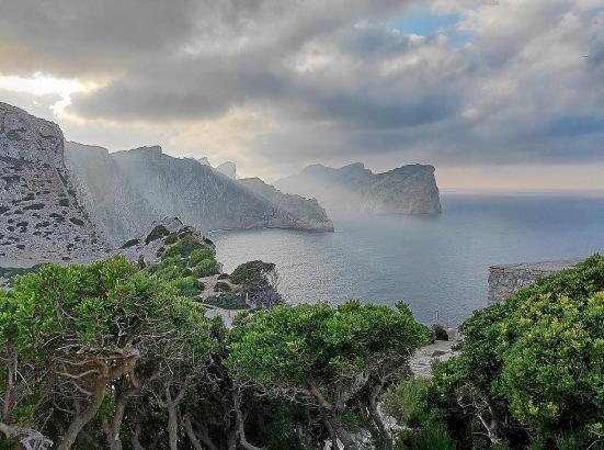 Mallorca bietet beste Voraussetzungen, eine Top-Marke zu werden: Naturschönheiten wie zum Beispiel in Formentor (Foto), das Meer, Kultur, Sport, Erlebnis, Gastronomie sorgen für ein einmaliges Erlebnis.