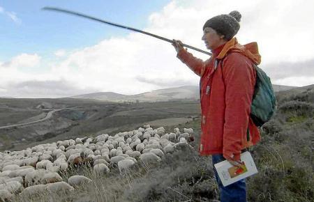 In der Serranía Celtibérica leben mehr Schafe als Menschen.