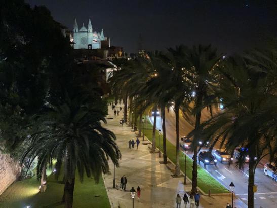 Die Anti-Corona-Maßnahmen auf Mallorca sollen entsprechend von der Entwicklung der Pandemie in den kommenden Wochen abhängen.