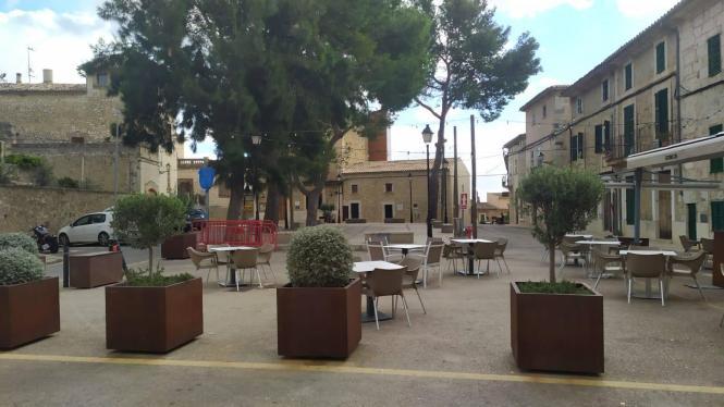 Im Rahmen der Sanierung der Plaça Major müssen die Bäume weichen.