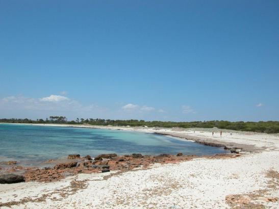 Der Tote wurde am Caragol-Strand angeschwemmt.