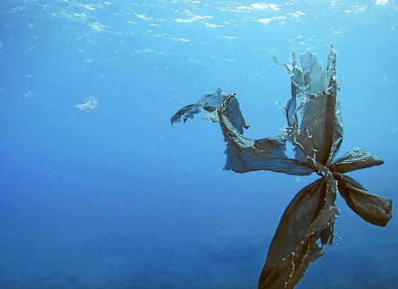 Glas- und Plastikmüll sind die häufigsten Ursachen der Verschmutzung.