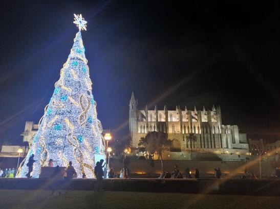 Auch der Weihnachtsbaum an der Kathedrale erstrahlt nur bis 20 Uhr in hellem Glanz.