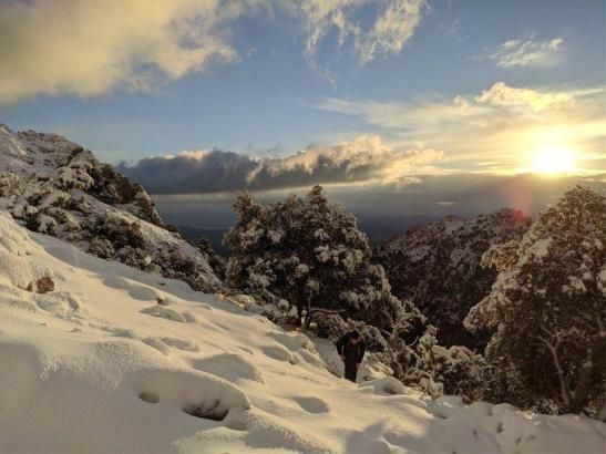 So alpin sah es am Montag am Massanella-Berg aus.