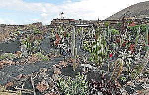 Blick auf den Kaktusgarten von César Manrique auf Lanzarote.