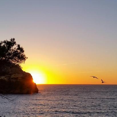 Auf Mallorca wird es wärmer.