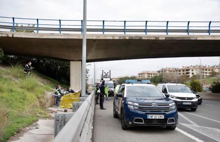 Die Leiche wurde in der Nähe der Ringautobahn in Palma entdeckt.