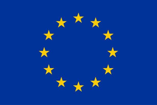 Die Fahne der Europäischen Union.