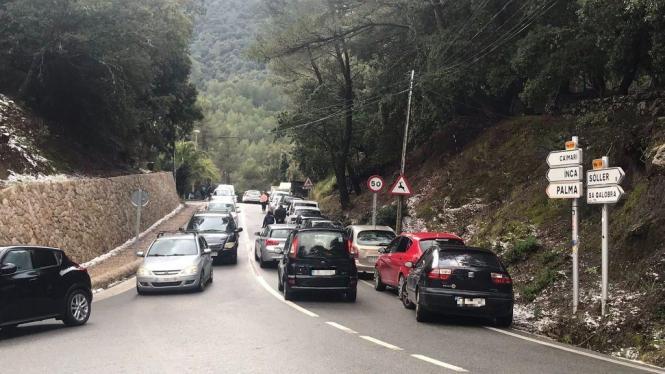 Es war viel los in der Serra de Tramuntana.