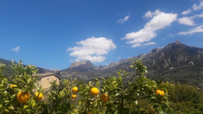 Bis zu elfeinhalb Stunden Sonne sind in den kommenden Tagen auf Mallorca möglich.