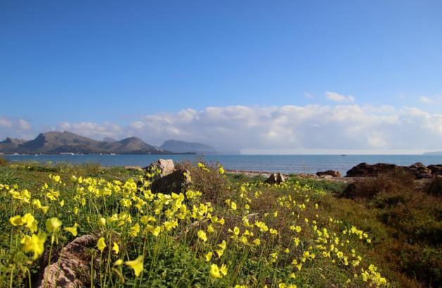 Die Temperaturen auf der Insel bleiben mild.