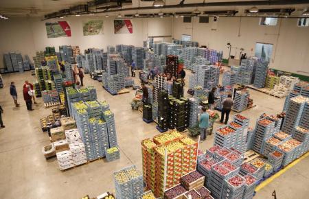 Der Großmarkt Mercapalma verzeichnet 20 Prozent Einnahmeverluste bei frischen Lebensmitteln.