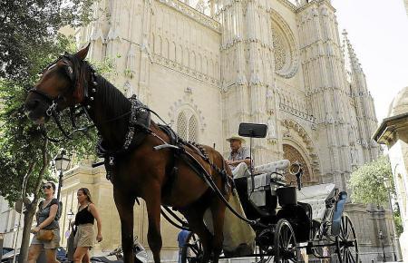 Pferdekutschen sind bereits seit Jahren auf Mallorca umstritten.