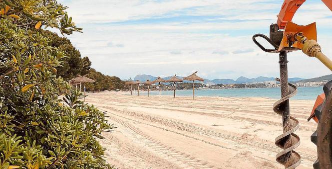 Am Strand von Alcúdia werden die ersten Vorbereitungen für die kommende Saison getroffen.
