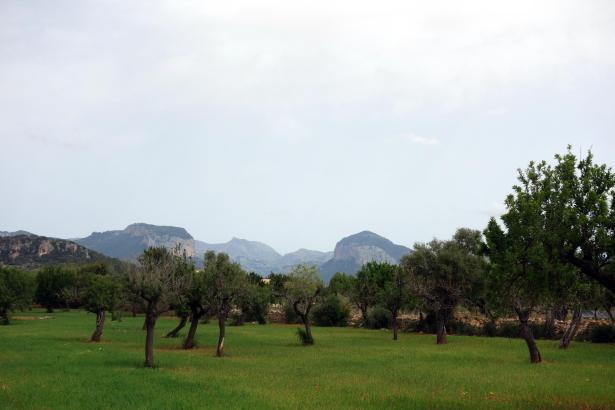 Mal Wolken, mal Nebel, mal Regen, mal Sonne auf Mallorca.
