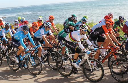 Bei der Challenge geben sich stets Radprofis aus aller Herren Länder ein Stelldichein.