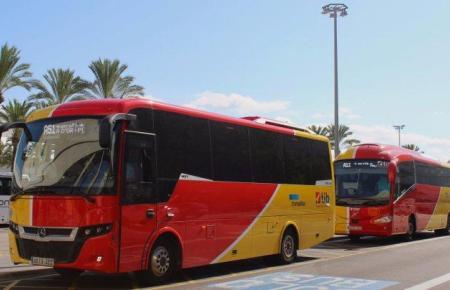 Die rotgelben TIB-Busse gehören zu Mallorca wie Sand, Tapas und Meer.