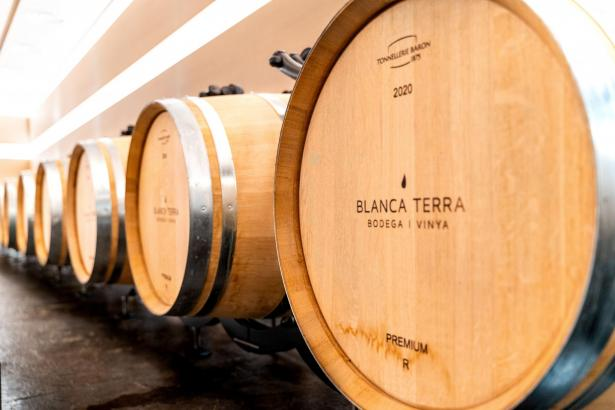 Viele der Weine von Blanca Terra reifen im Eichenfass.