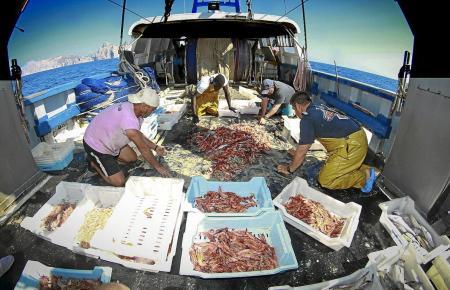 Fischer auf Mallorca protestieren gegen die neuen EU-Maßnahmen. (Foto: M. À. Cañellas)