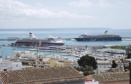 In den kommenden Wochen werden wieder vermehrt Kreuzfahrtschiffe erwartet.