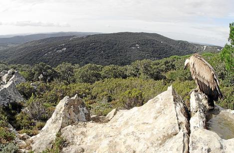 Titel: natur exclusiv  Untertitel: Spaniens wilder Süden - Eroberer