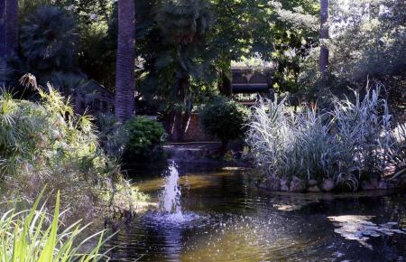 Im Zentrum des Grundstücks befindet sich ein Teich mit zahlreichen Seerosen und Palmen.