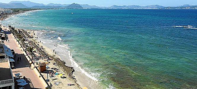Luftbild vom Strand von Can Picafort.