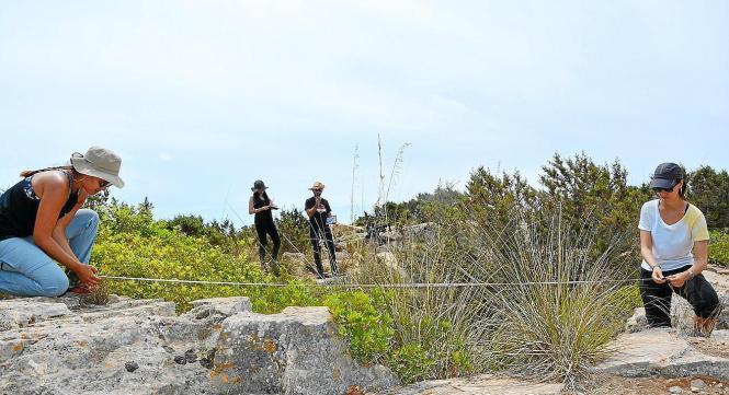 Überreste aus Spanischem Bürgerkrieg im Inselosten gefunden